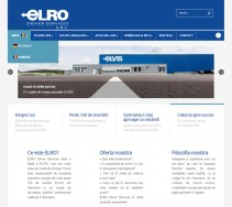 Website bilingv